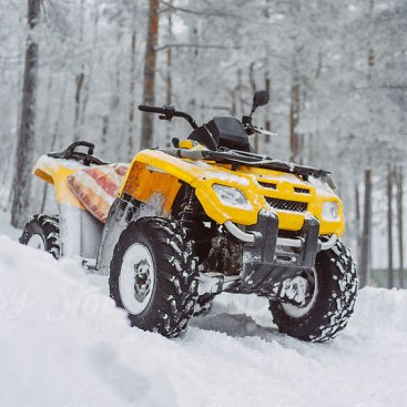 ATV/Snow Mobile/ARGO